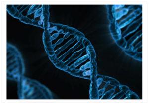 mthfr-gene-mutation-test